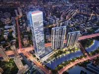 高铁站光明传奇 56平公寓 原价转让小补利息 市东部新区重点发展区域 懂的来