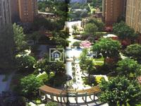低价出售,新华城,南北通透,145平,国有证,可以按揭,4房98万